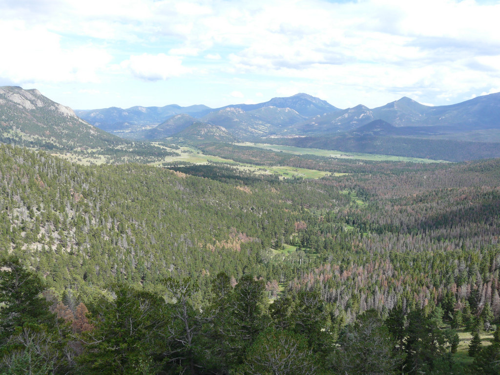 007 Rocky Mountains NP (137).JPG