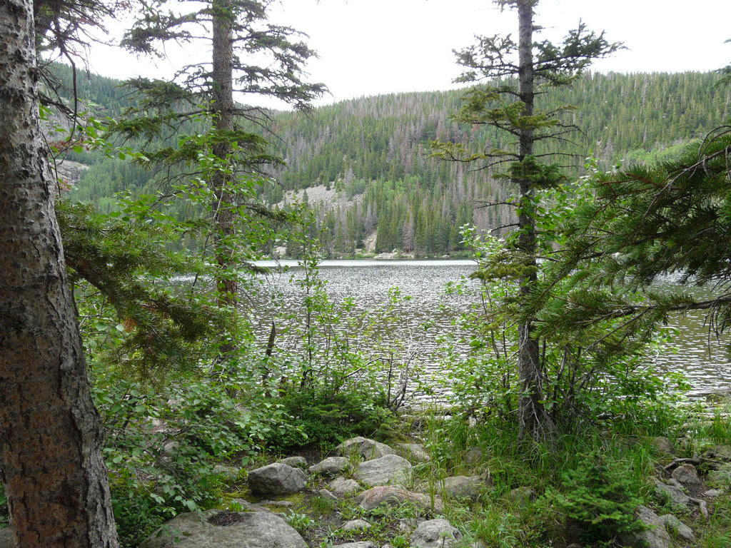 007 Rocky Mountains NP (140).JPG