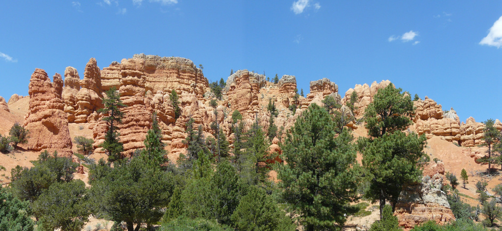 022 Red Canyon (108_2).jpg