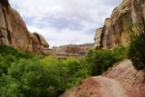 Lower Calf Creek Falls Trail