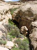 Petit canyon sur Alto Pueblo Trail