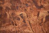 Cub Creek Petroglyphs