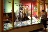 Buffalo Bill Museum, vitrines