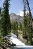 Cascade Canyon