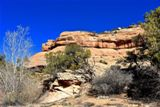 South Fork Mule Canyon
