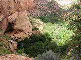 Canyon de Betatakin, vue de Aspen Trail