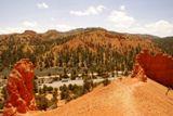 Photos/Images de Red Canyon