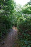 Marys Rock Summit Trail