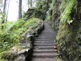 North Falls Trail