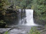 Photos/Images de Silver Falls State Park