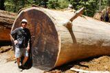 Photos/Images de Yosemite National Park