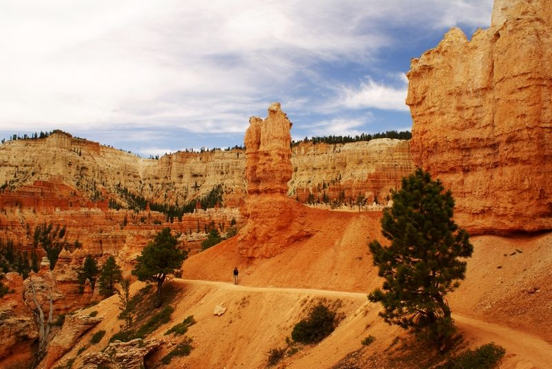 Rim'n Canyon Trail