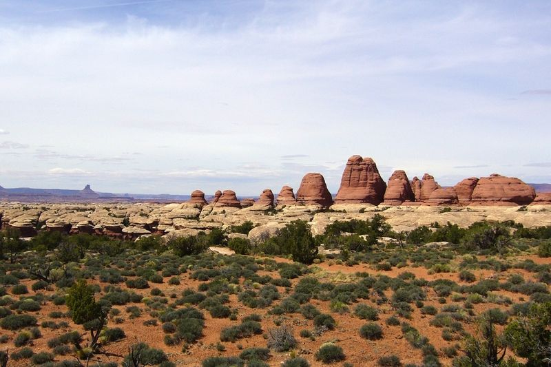 Canyonlands National Park - The Needles