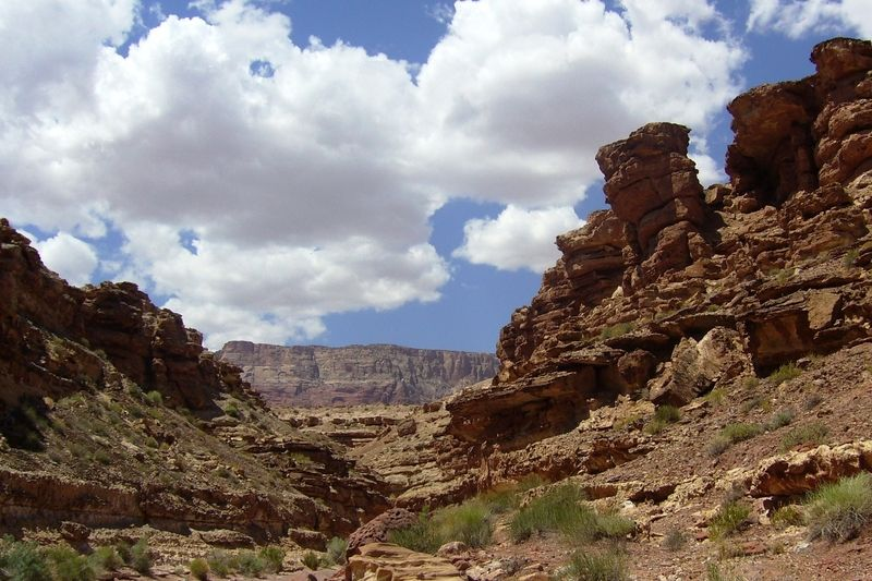Cathedral Wash Trail