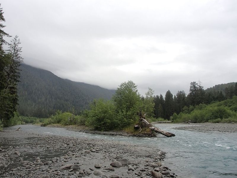 Hoh River - Olympic National Park
